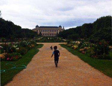 paris - jardin des plantes + enki dark contrast